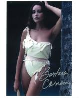 Barbara Carrera (Bond Girl) - Genuine Signed Autograph