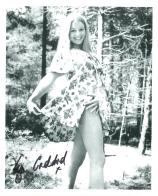 Liza Goddard (The Brothers, Bergerac, Doctor Who) - Genuine Signed Autograph 8109