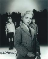 Martin Stephens (Village of the Damned) - Genuine Signed Autograph 7064